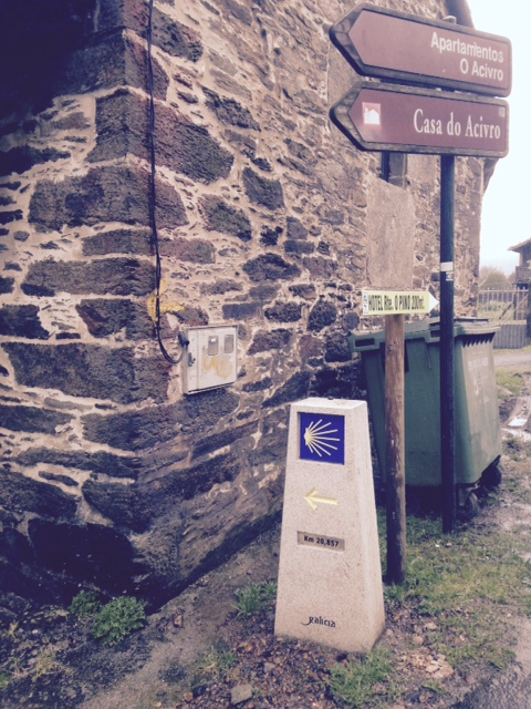 Camino De Santiago: French Way - Day 3 9