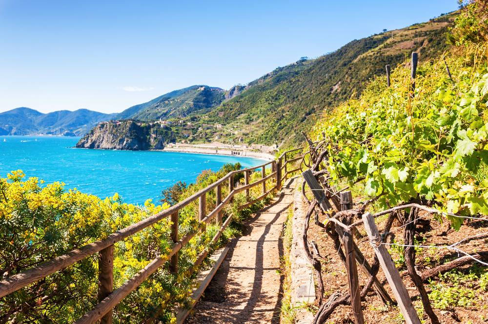 https://uwalk.ie/wp-content/uploads/2019/01/Cinque-Terre-Portofino-Walking-Tour-5.jpg