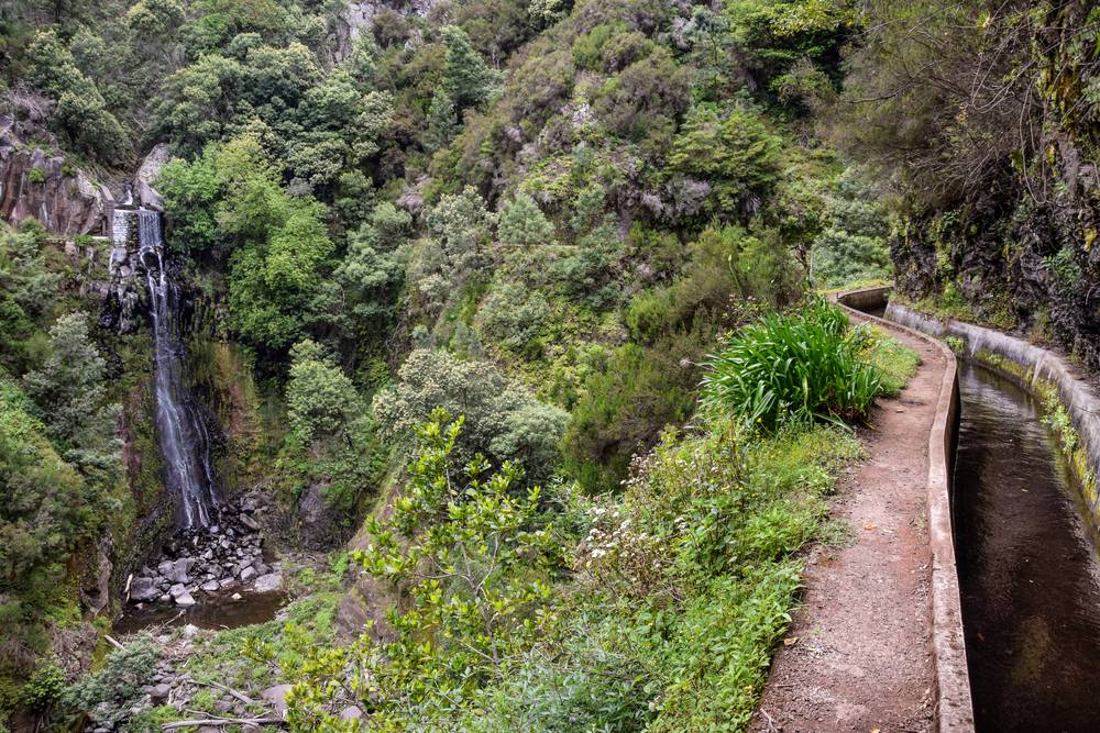 https://uwalk.ie/wp-content/uploads/2019/01/Madeira-Walking-Tour-1.jpg