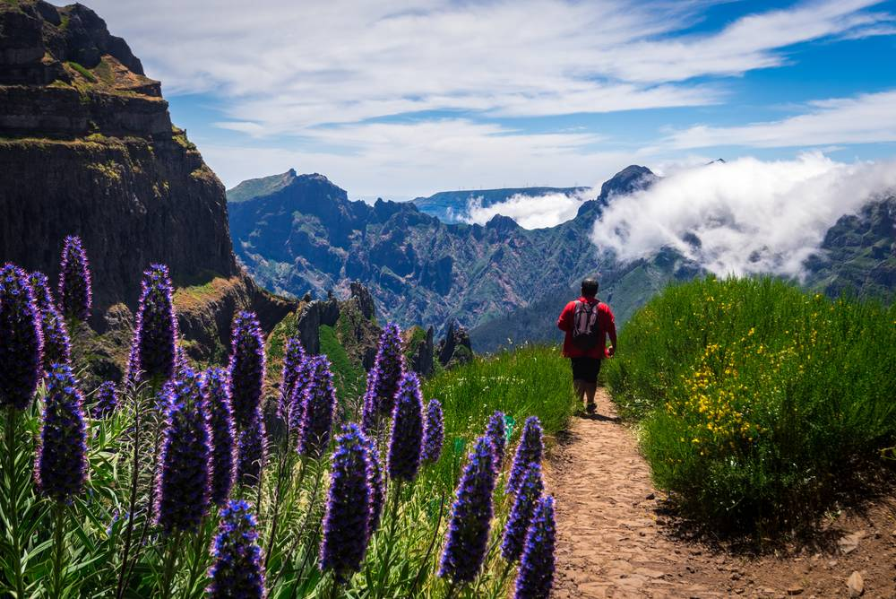 https://uwalk.ie/wp-content/uploads/2019/01/Madeira-Walking-Tour-5.jpg