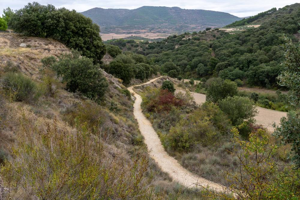 https://uwalk.ie/wp-content/uploads/2019/11/Punte-la-Reina-to-Estella-French-Way-Walking-Tour-Stage-1.jpg