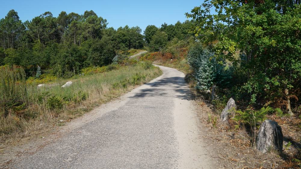 https://uwalk.ie/wp-content/uploads/2019/11/Redondela-and-Pontevedra-Portuguese-Way-Walking-Tour.jpg