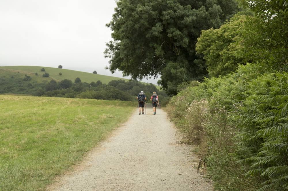 https://uwalk.ie/wp-content/uploads/2019/11/Roncesvalles-to-Zubiri-3-French-Way-Walking-Tour-Stage-1.jpg