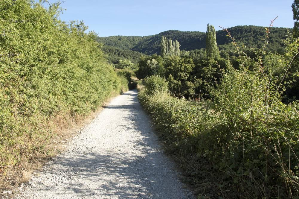 https://uwalk.ie/wp-content/uploads/2019/11/Zubiri-to-Pamplona-1-French-Way-Walking-Tour-Stage-1.jpg