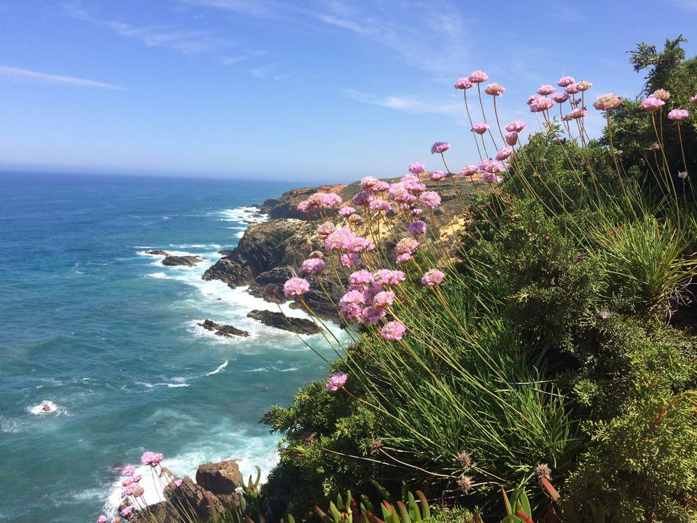 https://uwalk.ie/wp-content/uploads/2020/06/Portugal-Walking-Tour-Southwest-Coast-1.jpg